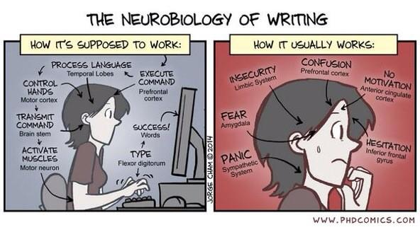writinghow-it-is-supposed-to-work-phd-comic